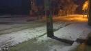 میلاجرد در یک شب برفی زمستان 89
